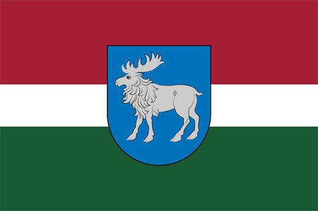 Flag of Selonia is a cultural region of Latvia encompassing the eastern part of the historical region of Semigallia. Vector illustration