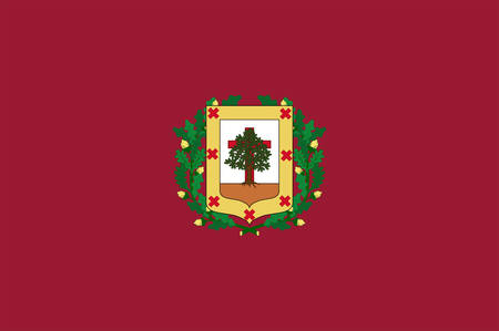 Flag of Biscay is a province of Spain located just south of the Bay of Biscay. Vector illustration Illustration