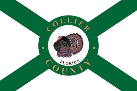 Flag of Collier County is a county in the U.S. state of Florida. Vector illustration Ilustração