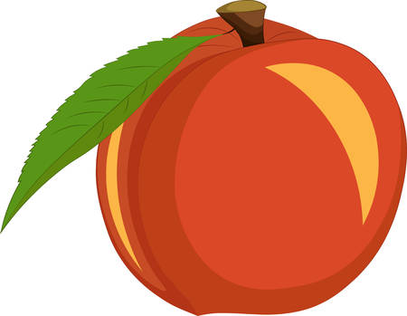 Peach isolated on white background. Vector illustration Ilustração