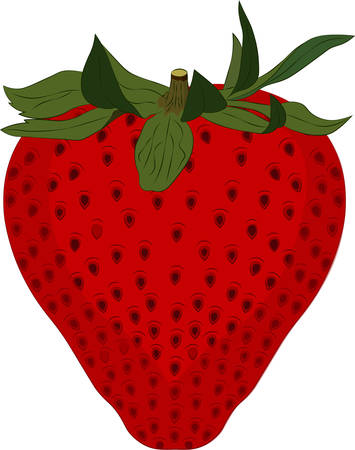 Strawberry isolated on white background. Vector illustration Ilustração