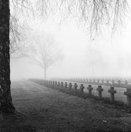 graveyard with rows of crosses and trees in the autumn mist monochrome film grain photo