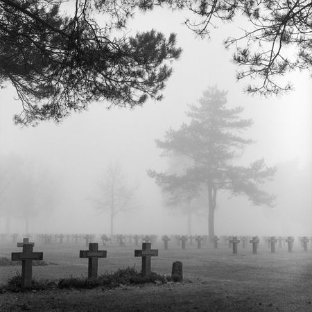 graves: graveyard with rows of crosses and trees in the autumn mist monochrome film grain