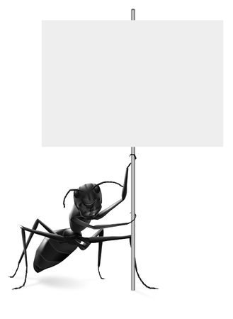 ant holding protest or advertising placard message ad or advertising billboard isolated on white background photo
