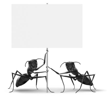 ad: ants holding protest or advertising placard message ad or advertising billboard isolated on white background Stock Photo
