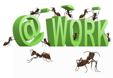 working animals: ant working being busy occupied work in progress 3D word with insects building it
