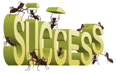 successful strategy: success successful building create your own fortune ants working to build 3D word isolated on white Stock Photo