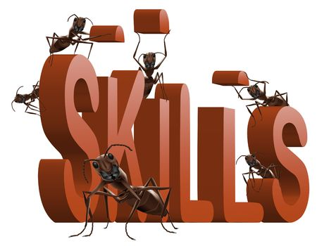 build your skills develop your talents