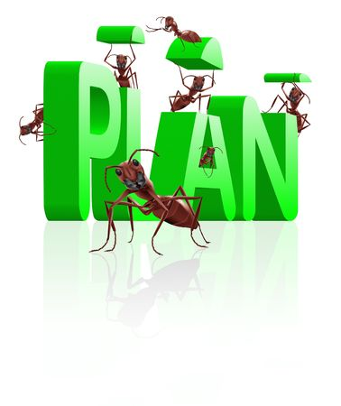 executing: ants building word plan executing of ideas realize dreams Stock Photo