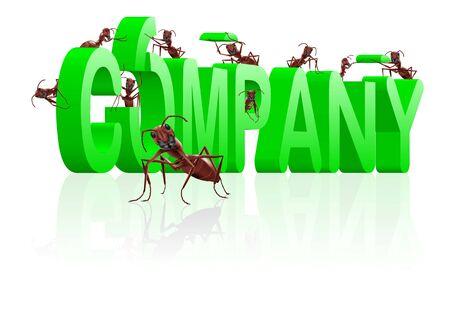 ants building company  brand com Stock Photo - 7790386
