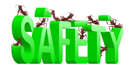 ants building safety secure protect and safe vlues or privacy Stock Photo - 7790462