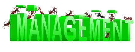 organise: Administraci�n de organizar su liderazgo de la organizaci�n verde