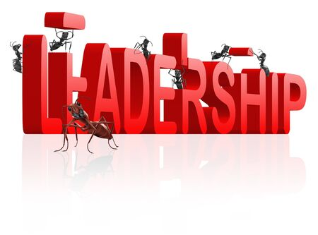 trough: building leadership innovate and create success lead the market be the leader trough innovation Stock Photo