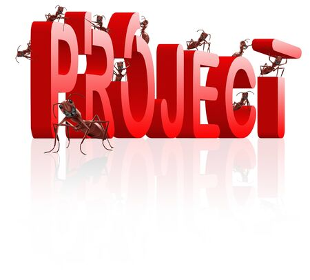 realiseren: project building realize your plan ants creating red word with reflection realize your plan Stockfoto