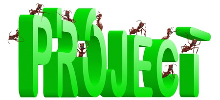 realiseren: project building realize your plan green word created by ants