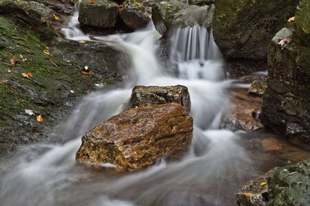 autumn stream or small river with small rapid and fallen leafs long exposure results in smooth surface photo