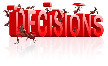 making decisions make choice choose direction yes or no decide initiative red word built by ants photo