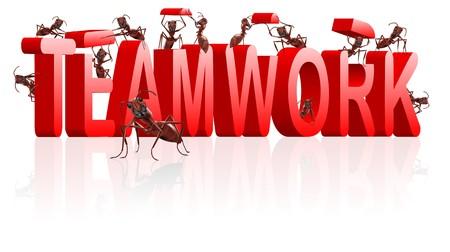 � teamwork: lavoro di squadra formiche cooperazione e collaborazione nella costruzione di parola Archivio Fotografico