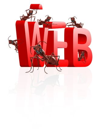 web website internet site under construction ants building word www Stock Photo - 8012945