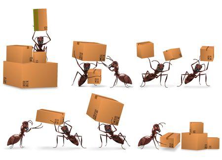 facteur: package livraison correspondance bo�te en carton paquet envoyer par les fourmis
