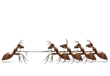 strongest: ant rope pulling business advantage or unbalanced fight concept