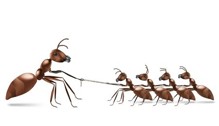 tug: ant rope pulling unbalanced business or sport rivalry