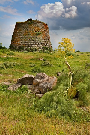mediterranian: Nuraghe tower ruins and giant flower Sardinia Sardegna Italy archeological remnants of prehistoric building of bronze age ancient civilization trourism