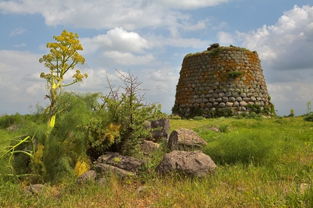 Nuraghe tower ruins and giant flower Sardinia Sardegna Italy archeological remnants of prehistoric building of bronze age ancient civilization trourism
