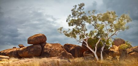 erosion: Devils marbles Northern territory Australia, giant granite boulders formed by erosion, long exposure gives blurred leaves and grass adding mystery to the image Stock Photo