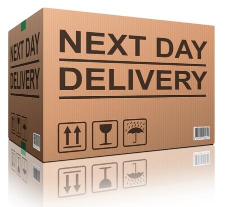 pappkarton: Lieferung am n�chsten Tag Karton mit Text-Icon f�r Web-Shop schnellen Versand von E-Commerce Internet bestellen