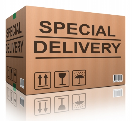 order delivery: special delivery important shipment special package sending express shipping cardboard box isolated and with txt