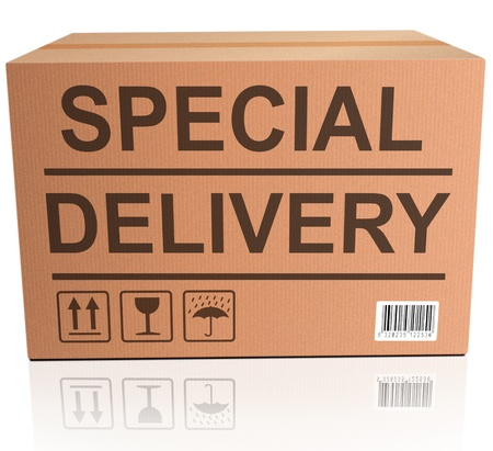 package sending: special delivery important shipment of online order from webshop, package sending express shipping