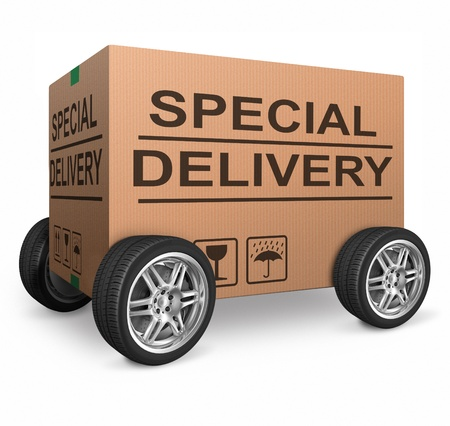 special delivery important package shipment special package sending express shipping cardboard box isolated and with text webshop web shop icon photo
