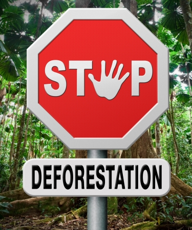 logging: stop deforestation, protect tropical rainforest, the Amazon rain forest, the jungle in Africa Asia and Australia. Protection of the lung of the earth against illegal logging. Nature conservation to safe the planet.