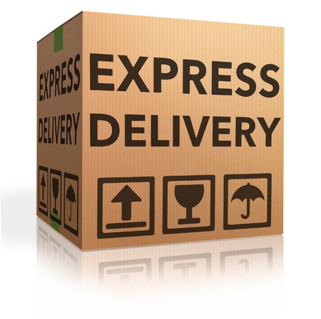 webshop: Express delivery cardboard box special shipment online internet order from webshop