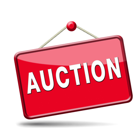 bid online on internet auction for cars real estate or houses photo