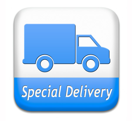 webshop: special delivery online package shipping web shop internet order from webshop icon or button Stock Photo