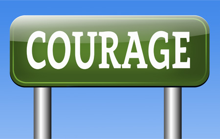 fearless: courageous, courage and bravery the ability to confront fear pain danger uncertainty and intimidation fearless