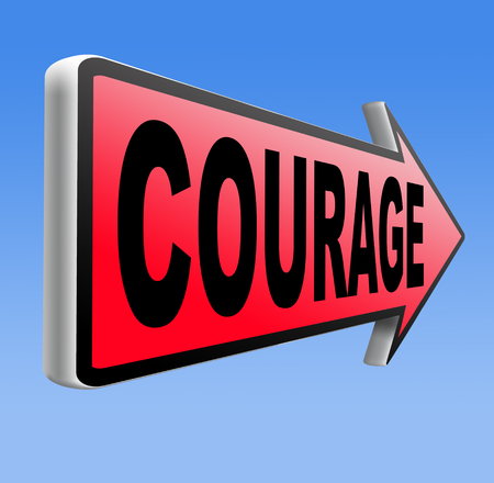 fearless: courage and bravery the ability to confront fear pain danger uncertainty and intimidation fearless