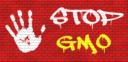genetically modified crops: no gmo stop genetic manipulated organisms or food engineering grafitty on red brick wall, text and hand