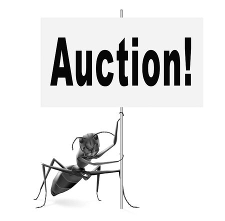 puja: Online auction bid here and now. Buy and sell products real estate and cars or houses on the internet.