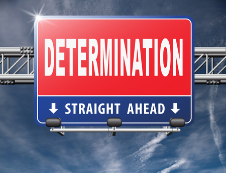 fortitude: determination keep on trying, try again until you succeed, never give up hope for success. Persistence will pay off! Never stop or quit!