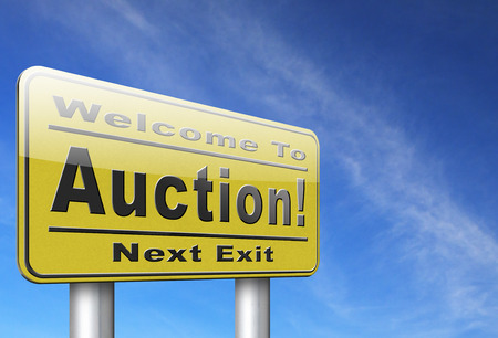 bidder: Online auction bid here and now. Buy and sell products real estate and cars or houses on the internet.
