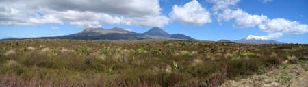 Panorama of the volcanos in the Tongariro National Park on the North Island of New Zealand photo