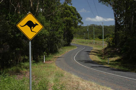A road sign warning against cangaroos on a country road in Queensland, Australia. photo