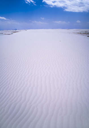 White Sands National Monument, New Mexico, USA. Stock Photo - 5692026