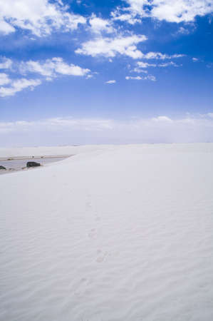 White Sands National Monument, New Mexico, USA. photo