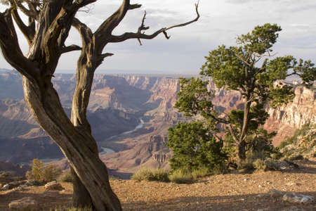 Beautiful Landscape of Grand Canyon from Desert View Point during sunset photo