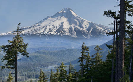 Majestic View of Mt. Hood on a bright, sunny day during the summer months. Stock Photo - 6166974