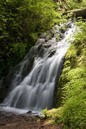 Beautiful Image of a flowing waterfall on Ainsworth Hiking Trail. Imagens